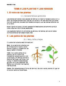 TEMA 6 LAS PLANTAS Y LOS HONGOS 1. El reino de las plantas