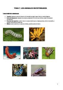 TEMA 7. LOS ANIMALES INVERTEBRADOS