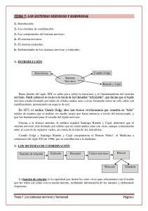 TEMA 7: LOS SISTEMAS NERVIOSO Y HORMONAL
