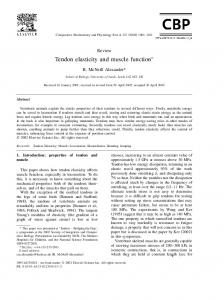 Tendon elasticity and muscle function