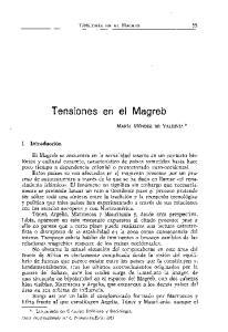Tensiones en el Magreb