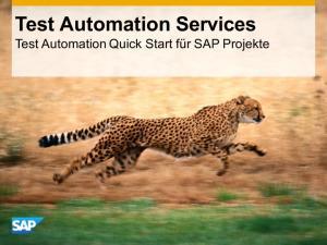 Test Automation Services Test Automation Quick Start für SAP Projekte