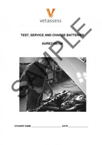 TEST, SERVICE AND CHARGE BATTERIES
