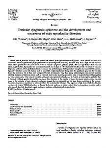 Testicular dysgenesis syndrome and the development and occurrence of male reproductive disorders