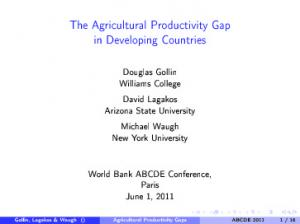 The Agricultural Productivity Gap in Developing Countries