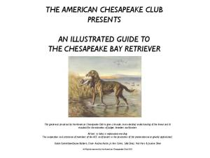 THE AMERICAN CHESAPEAKE CLUB PRESENTS AN ILLUSTRATED GUIDE TO THE CHESAPEAKE BAY RETRIEVER