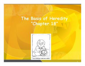 The Basis of Heredity Chapter 18
