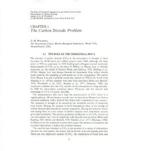 The Carbon Dioxide Problem