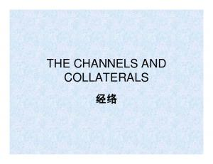 THE CHANNELS AND COLLATERALS