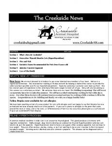The Creekside News WHAT S NEW AT CREEKSIDE? FELINE HYPERTHYROIDISM