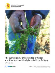 The current status of knowledge of herbal medicine and medicinal plants in Fiche, Ethiopia