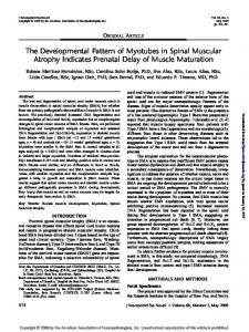 The Developmental Pattern of Myotubes in Spinal Muscular Atrophy Indicates Prenatal Delay of Muscle Maturation