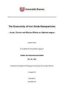The Ecotoxicity of Iron Oxide Nanoparticles