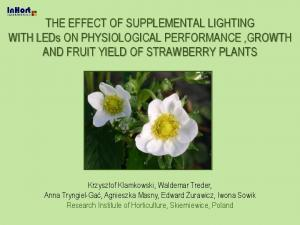 THE EFFECT OF SUPPLEMENTAL LIGHTING WITH LEDs ON PHYSIOLOGICAL PERFORMANCE,GROWTH AND FRUIT YIELD OF STRAWBERRY PLANTS