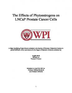 The Effects of Phytoestrogens on LNCaP Prostate Cancer Cells
