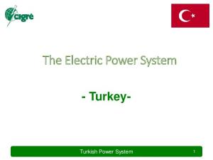 The Electric Power System