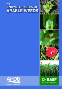 The encyclopaedia of arable Weeds