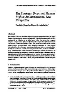 The European Union and Human Rights: An International Law Perspective
