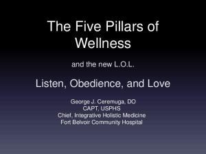 The Five Pillars of Wellness