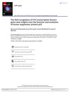 The fold recognition of CP2 transcription factors gives new insights into the function and evolution of tumor suppressor protein p53