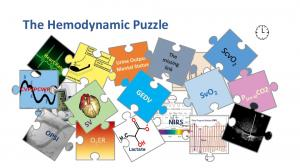 The Hemodynamic Puzzle