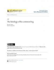 The histology of the common frog