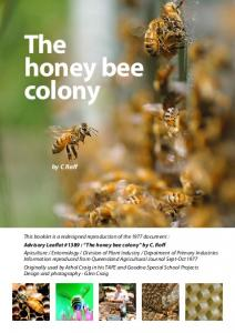 The honey bee colony. by C Roff