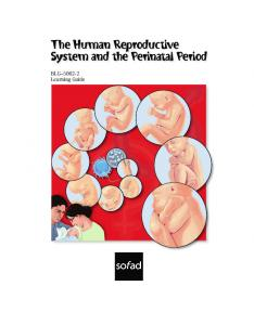 The Human Reproductive System and the Perinatal Period. BLG Learning Guide