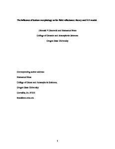 The influence of bottom morphology on far field reflectance: theory and 2-D model. J.Ronald V.Zaneveld and Emmanuel Boss