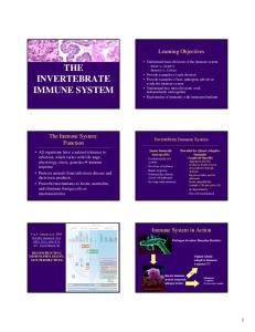 THE INVERTEBRATE IMMUNE SYSTEM