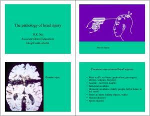 The pathology of head injury