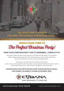 The Perfect Christmas Party!