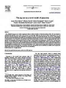 The pig eye as a novel model of glaucoma