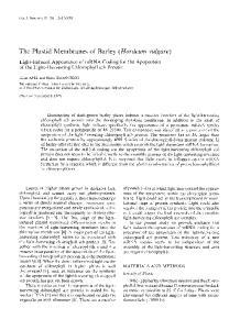 The Plastid Membranes of Barley (Hordeurn vulgare)