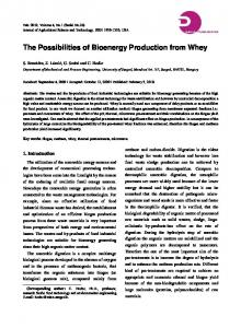The Possibilities of Bioenergy Production from Whey