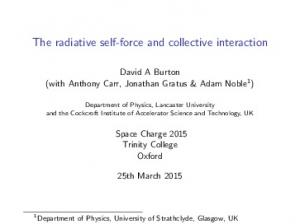 The radiative self-force and collective interaction