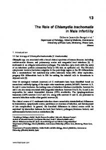 The Role of Chlamydia trachomatis in Male Infertility