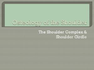 The Shoulder Complex & Shoulder Girdle