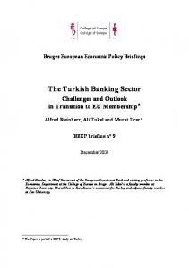 The Turkish Banking Sector