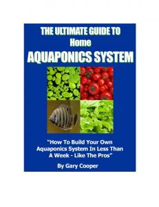The Ultimate Guide To Home Aquaponics System