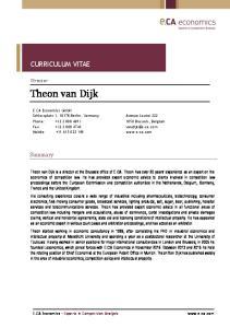 Theon van Dijk CURRICULUM VITAE. Summary. Director