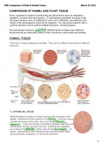 There are 4 types of tissues in animals. They all look different and perform different functions