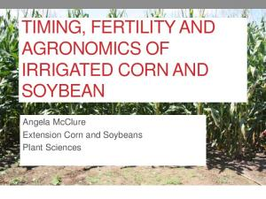 TIMING, FERTILITY AND AGRONOMICS OF IRRIGATED CORN AND SOYBEAN. Angela McClure Extension Corn and Soybeans Plant Sciences
