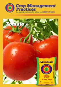 Tomato. Crop Management Practices. An Agricultural Extension Initiative of