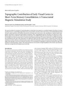 Topographic Contribution of Early Visual Cortex to Short-Term Memory Consolidation: A Transcranial Magnetic Stimulation Study