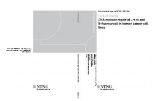 Torkild Visnes DNA excision repair of uracil and 5-fluorouracil in human cancer cell lines