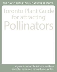 Toronto Plant Guide for attracting. Pollinators $5.00. A guide to native plants that attract bees and other pollinators to your home garden