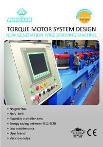 TORQUE MOTOR SYSTEM DESIGN