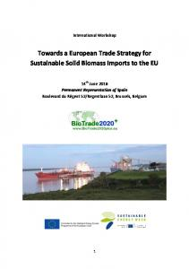 Towards a European Trade Strategy for Sustainable Solid Biomass Imports to the EU