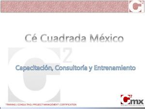 TRAINING CONSULTING PROJECT MANAGEMENT CERTIFICATION
